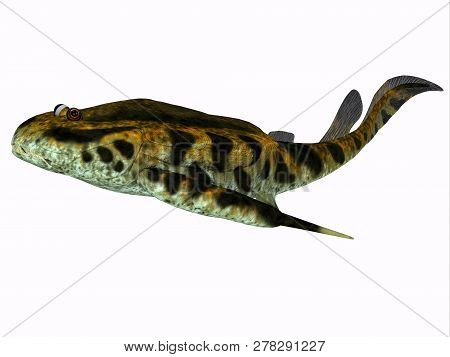 Bothriolepis Fish 3d Illustration - Bothriolepis Was An Aquatic Placoderm Fish That Lived During The