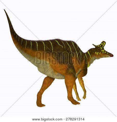 Lambeosaurus Dinosaur 3d Illustration - Lambeosaurus Was A Herbivorous Hadrosaur Dinosaur That Lived