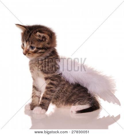 stripy angel [clipping path]