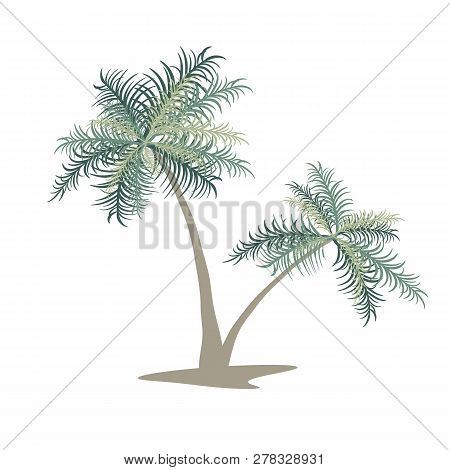 Two Palm Trees. Isolated Vector Image. Eps 10