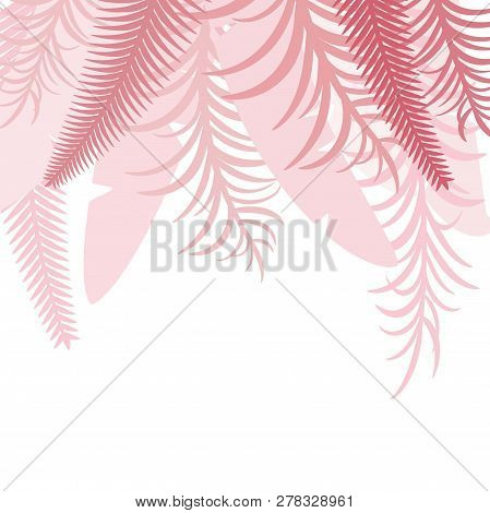 Pink Top Tropical Background With Palm Leaves. Vector Image. Eps 10