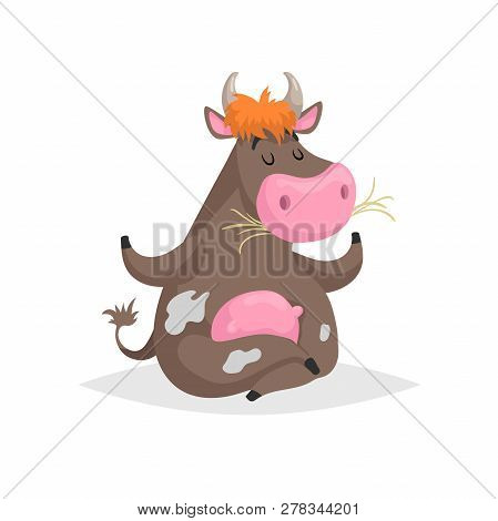 Cartoon Brown Spotted Sitting In Meditation Pose Cow. Farm Funny Animal Chewing Straw And Relaxing.