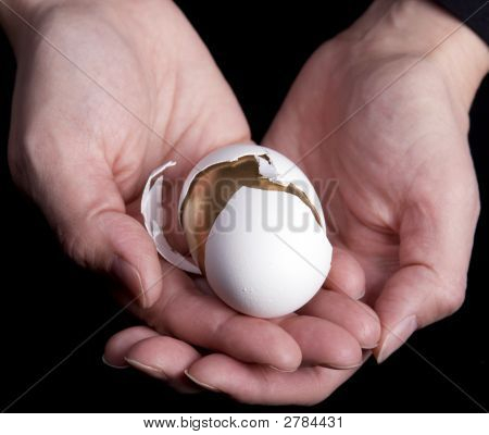 Hands Holding Egg