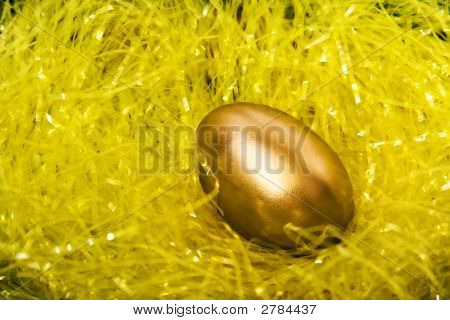 Golden Egg In Yellow Straw