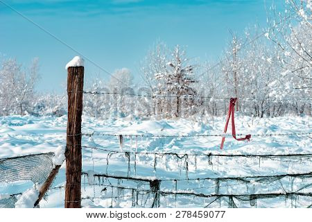 Winter In Countryside, Idyllic Snow Covered Fence