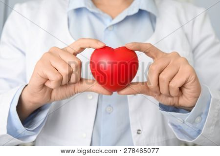 Doctor Holding Red Heart, Closeup. Cardiology Concept