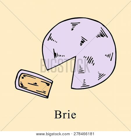 Brie Vector Illustration In Cartoon Style. Perfect For Menu, Card, Bag Design