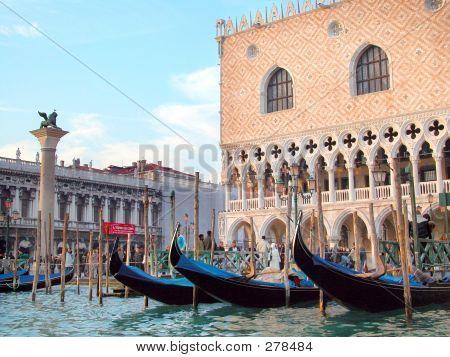 San Marco Square View