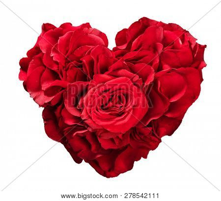 Red roses in heart shape isolated on white. Valentine's Day. Symbol of love and romance.
