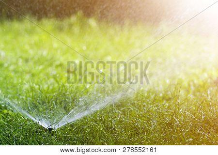 Lawn Water Sprinkler Spraying Water Over Lawn Green Fresh Grass In Garden Or Backyard On Hot Summer