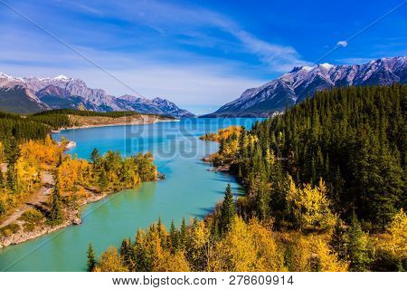 Mountain valley in the Rocky Mountains of Canada. Golden Autumn in the birch and aspen groves on shores of Abraham Lake. Concept of active, ecological and photo tourism