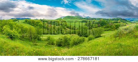 Beautiful Countryside Panorama In Springtime. Grassy Hills And Meadows. Trees With Green Foliage On
