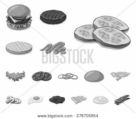 Isolated Object Of Burger And Sandwich Sign. Collection Of Burger And Slice Vector Icon For Stock.