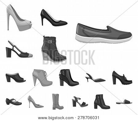 Isolated Object Of Footwear And Woman Logo. Set Of Footwear And Foot Stock Vector Illustration.
