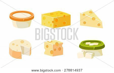 Collection Of Cheese Assortment, Various Types Fresh Cheesy Products Vector Illustration