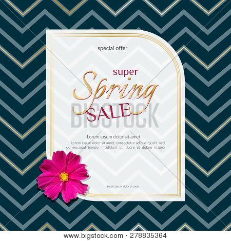 Spring Sale Banner On Elegant Dark Luxury Background Of Golden Zigzag Lines And Chamomile Flower Ban
