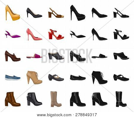 Vector Illustration Of Footwear And Woman Sign. Collection Of Footwear And Foot Vector Icon For Stoc
