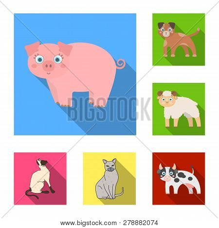 Vector Illustration Of Animal And Habitat Logo. Set Of Animal And Farm Vector Icon For Stock.