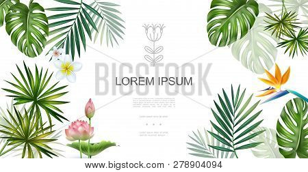 Realistic Tropical Plants Floral Concept With Frangipani Lotus Bird Of Paradise Flowers Monstera And