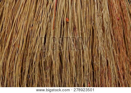 Brown Wooden Texture Of Thin Branches In A Bunch Of Broom