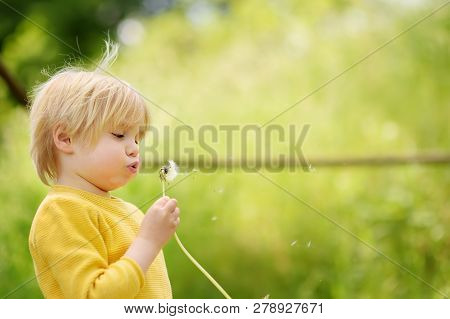 Charming Blonde Little Boy Playing With Dandelion Flower On Summer Day. Kids Having Fun In Sunny Par