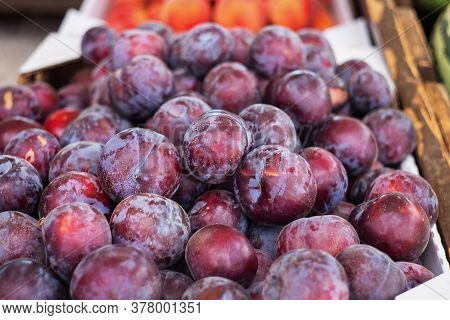Red Plums Are Sold At The Farmers ' Market. Fresh Plums Close-up. Selective And Soft Focus. Season O