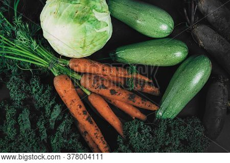 A Collection Of Organic Vegetables Collected From The Garden. Organic Eco Food. Healthy Diet. Freshl