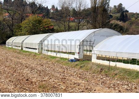 Row Of Large Garden Greenhouses Made Of Metal Pipes Covered With Partially Open Semi Transparent Nyl