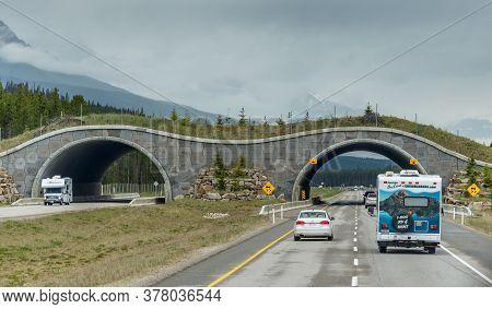 Banff, Alberta / Canada - 06/19/2015 Animal Bridge Near Banff, Canada