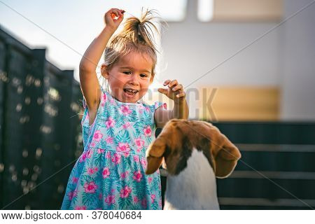 Baby Girl Running With Beagle Dog In Backyard In Summer Day. Domestic Animal With Children Concept.