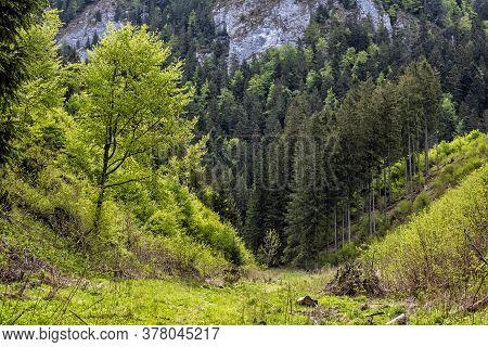 Huciaky Gorge, Low Tatras Mountains, Slovak Republic. Travel Destination. Hiking Theme.