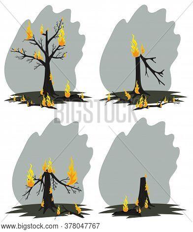Vector Illustration Of Burnt Firewood. Burnt Forest.