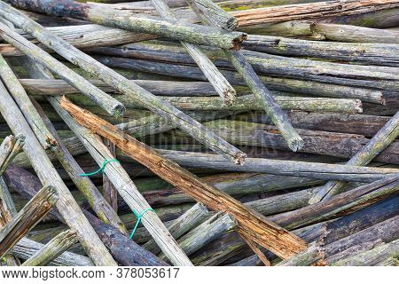 Background Texture Stack Of Old Wooden Stakes With Green Deposits