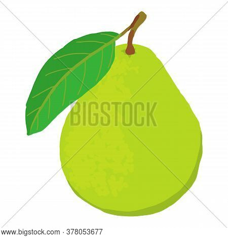 Whole Fresh Guava Icon. Isometric Of Whole Fresh Guava Vector Icon For Web Design Isolated On White