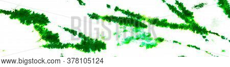Green Fruit Leaves. Summer Watercolor Illustration. Sea White Background. Tropical Organic Grunge. G