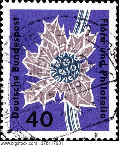 02 09 2020 Divnoe Stavropol Territory Russia The Postage Stamp Germany 1963 Flora And Philately Exhi