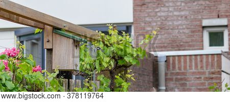 Banner With A Great Tit Flying From His Nestbox In A Garden.