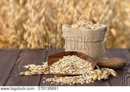 Raw Oatmeal In Bag And Wooden Scoop On Table With Ripe Cereal Field On The Background. Uncooked Porr