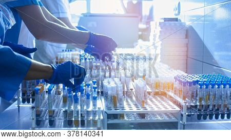 Medical Workers, Laboratory Assistants Work With Test Tubes For The Analysis Of Biomaterials In Medi