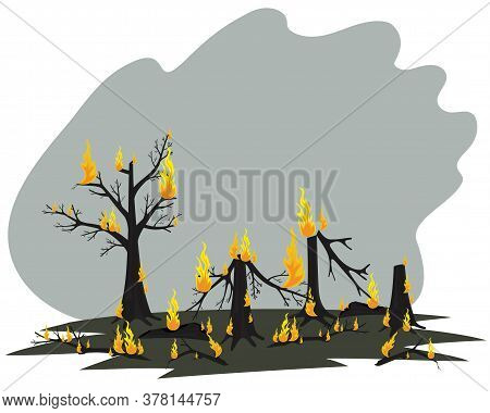 Trees In The Fire. Forest Fire. Vector Illustration Of Silhouettes Of Burnt Firewood. Burnt Forest