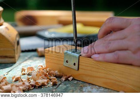 Diy Woman Repairing Furniture At Home, Mounting Metal Bracket On Wooden Plank Using Screwdriver. Woo
