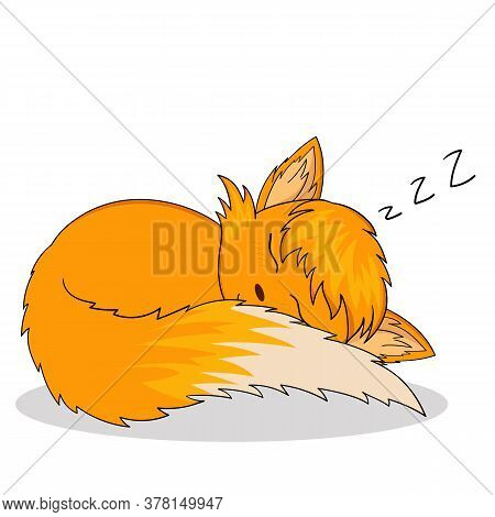Fox Sleeping. Vector Illustration Of Sleeping Anime Chanterelle Sticker