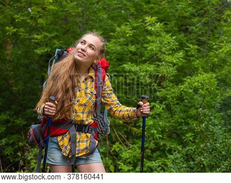 A Girl With A Backpack Walks Through The Forest And Admires The Beauty Of Nature.
