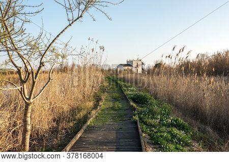 Tancat De La Pipa Albufera Valencia, Touristic Ride. Old Rice Field Converted Into A Natural Reserve