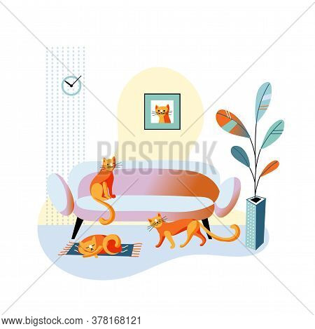 Red Cat Sitting On Sofa, Lying Sleeping On Mat, Walking On Floor. Cozy Home Living Room In Minimalis