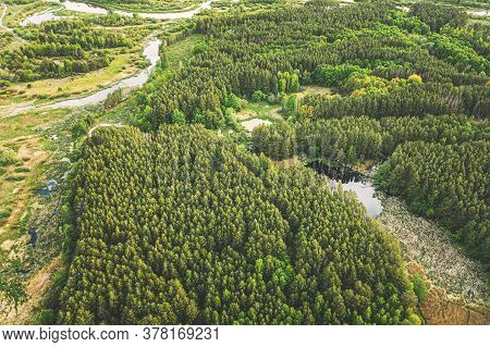 Aerial View Green Forest Woods And River Marsh In Summer Landscape. Top View Of Beautiful European N