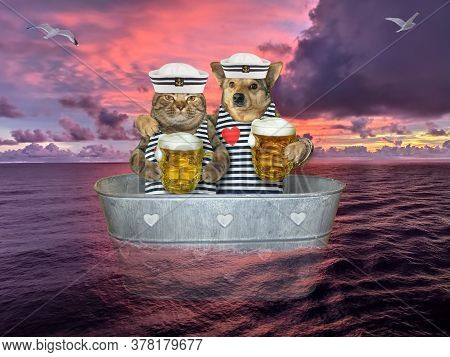 The Beige Cat And The Dog In Seaman Clothing Are Drinking Beer And Drifting In A Metal Oval Washtub