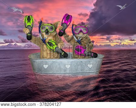 The Beige Cat And The Dog Are Divers With Masks, Snorkels And Flippers They Are Drifting In A Metal