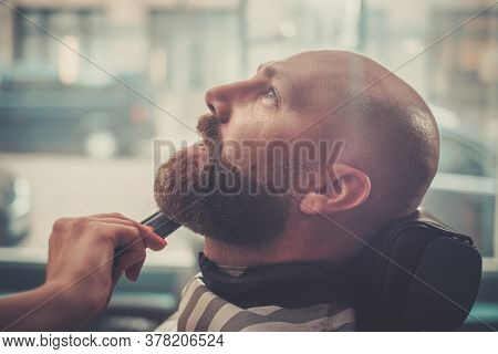 Focused Man Prepares For Beard Haircut.