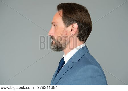Serious Well Groomed Man With Beard In Suit Side View, Barbershop Services Concept.